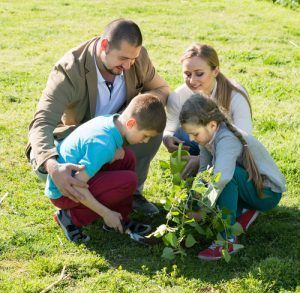 Family Volunteering